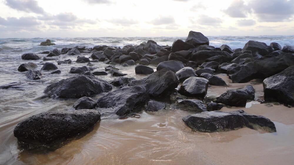 sand crabs at Nukolii Beach - 2016-05-27