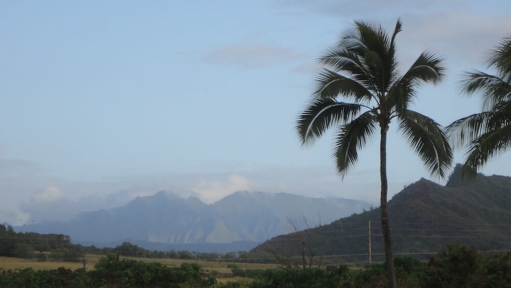 Lihue-Koloa Forest Reserve (I think) - taken May 2012 looking west from Lydgate Park walking path