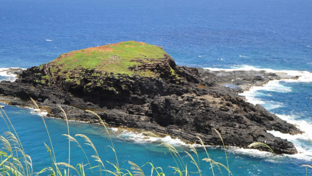 Friday Fotos — Kilauea Lighthouse Point Wildlife Refuge