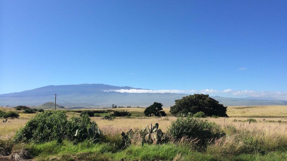 mamalaloa highway looking toward mauna kea