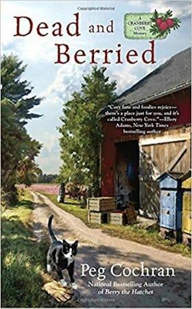 Behind the story of Death in Dark Blue by Julia Buckley