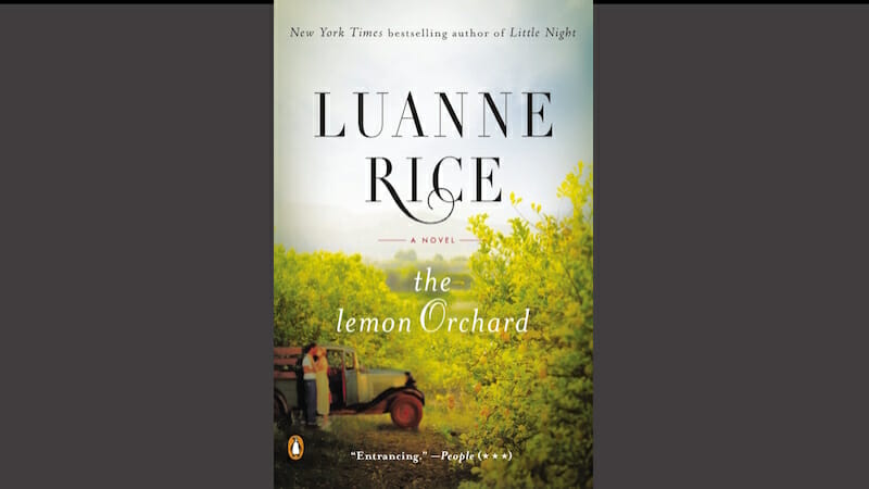 The Lemon Orchard is an intriguing love story