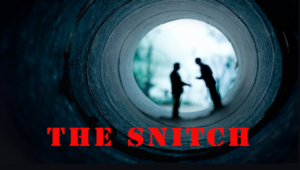 View the latest edition of The Snitch for a great scam tip, recipe, and contest info.