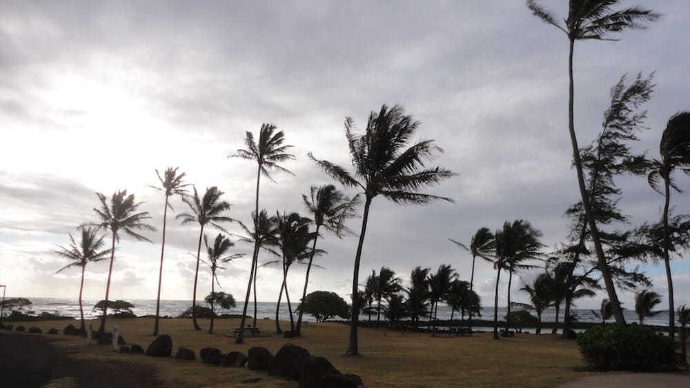 unknown beach on Kauai