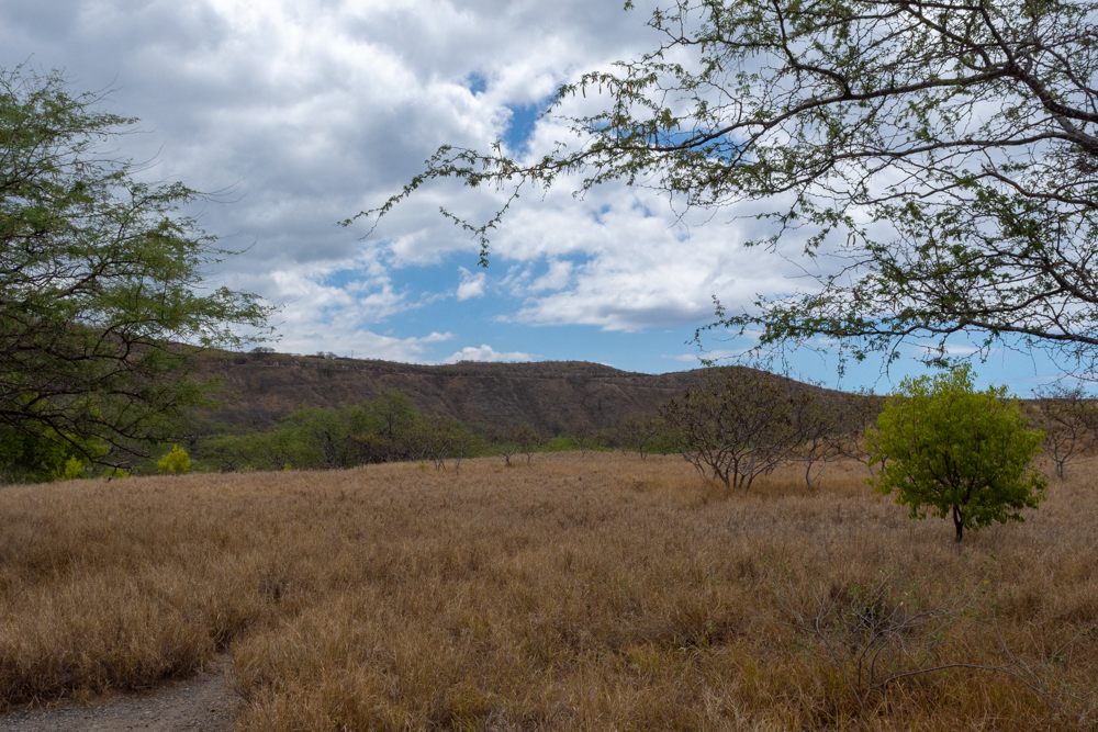 Diamond Head trail begins on flat, dry land.