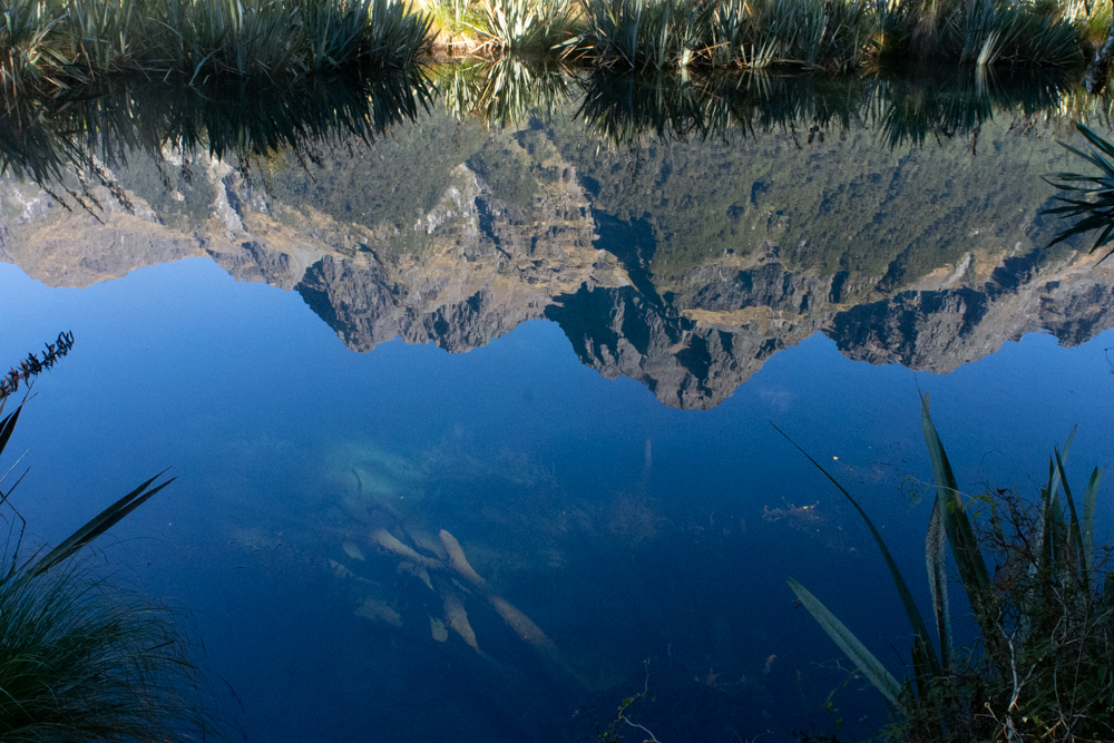 Mirror Lakes and the world upside down