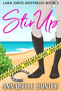 Stir Up review book cover