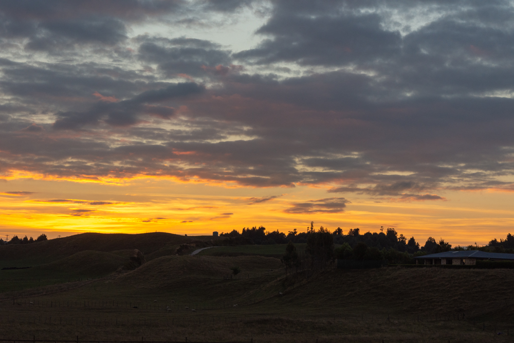 New Zealand countryside sunset