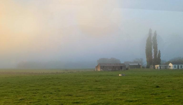 New Zealand farm on the road